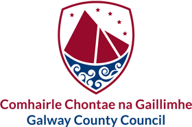 Galway Co Council